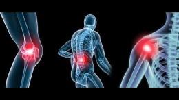 rheumatology1